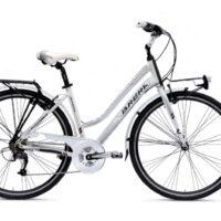 """Bicicletta City Bike """" Brera AMSTERDAM  7 Velocita' """",Misura Telaio 43 Alluminio DONNA Colore Bianco Lucido"""
