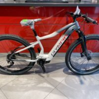 """Bicicletta Mtb  E-Bike Front  Olympia """"Performer Sport 900 Olieds """" Alluminio  Taglia L Colore Argento-Bianco"""